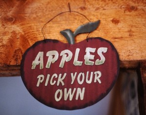 """Pick your own apples"" sign"