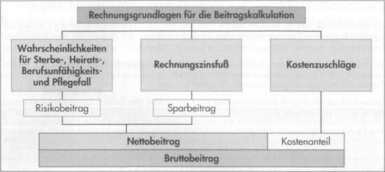 Beitragsberechnung bei Lebensversicherung17
